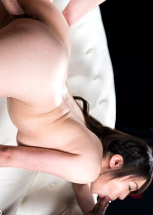 Spermmania Model